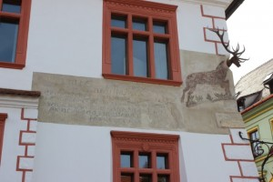 Sighisoara - Stag Building